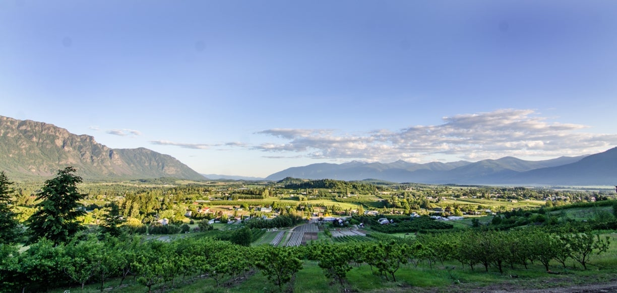 Creston Valley orchards and farmland
