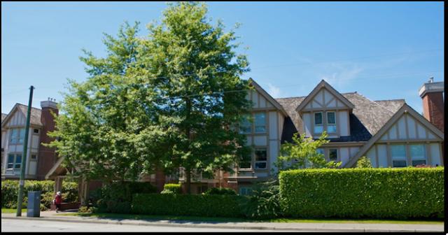 Tudor Garden   --   843 22ND ST - West Vancouver/Dundarave #11