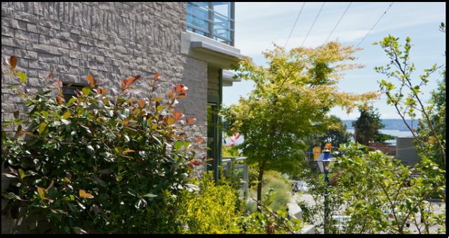 Dundarave Landing   --   1140 - 1180 25TH ST - West Vancouver/Dundarave #15