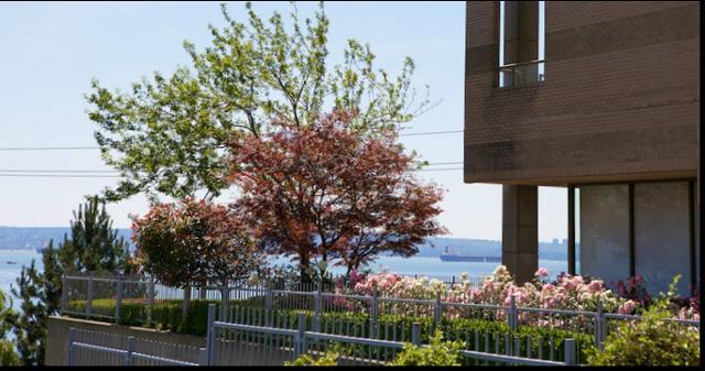 Les Terraces   --   2250 BELLEVUE AV - West Vancouver/Dundarave #2
