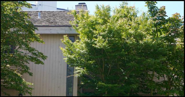 Bellevue Townhouses   --   1858 - 1896 BELLEVUE AV - West Vancouver/Ambleside #6