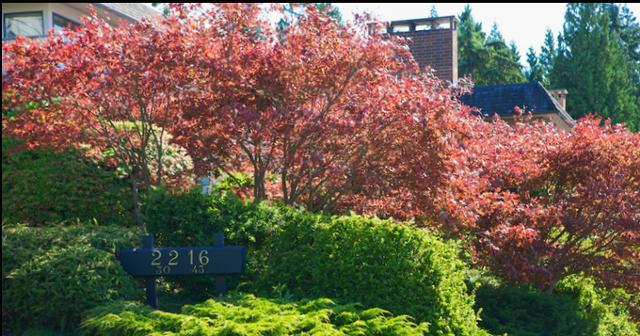 Panorama Village   --   2206 - 2216 FOLKESTONE WY - West Vancouver/Panorama Village #9