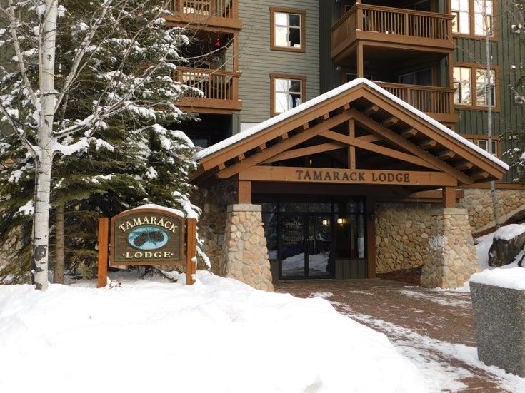 Tamarack Lodge   --   2060 SUMMIT DRIVE  - British Columbia/Panorama #1