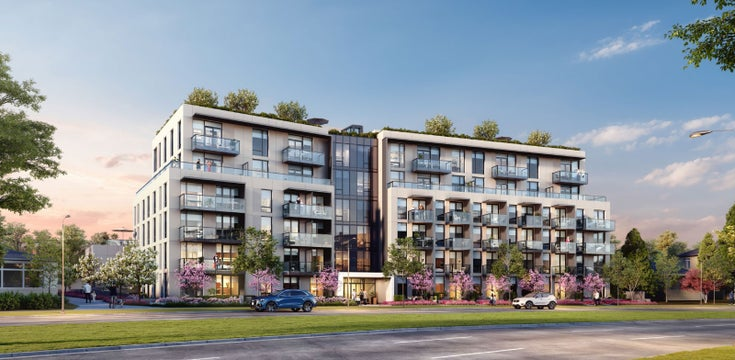 LINA   --   5190 Cambie St - Vancouver West/Cambie #1