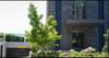 The Argyle   --   2142 ARGYLE AV - West Vancouver/Dundarave #1