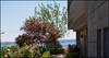 Les Terraces   --   2250 BELLEVUE AV - West Vancouver/Dundarave #1