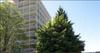 Westview Terrace   --   1390 DUCHESS AV - West Vancouver/Ambleside #5