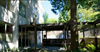 Shalimar   --   1785 ESQUIMALT AV - West Vancouver/Ambleside #6