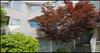 2433 Bellevue Ave   --   2433 BELLEVUE AV - West Vancouver/Dundarave #2