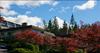 Panorama Village   --   2206 - 2216 FOLKESTONE WY - West Vancouver/Panorama Village #10
