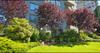 Clyde Gardens   --   1341 CLYDE AV - West Vancouver/Altamont #5