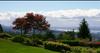 Panorama Gardens   --   2236 - 2250 FOLKESTONE WY - West Vancouver/Panorama Village #6