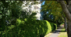 Oceanbrook Apartments   --   1425 ESQUIMALT AV - West Vancouver/Ambleside #5