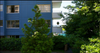 Wedgewood Terrace   --   1730 DUCHESS AV - West Vancouver/Ambleside #4