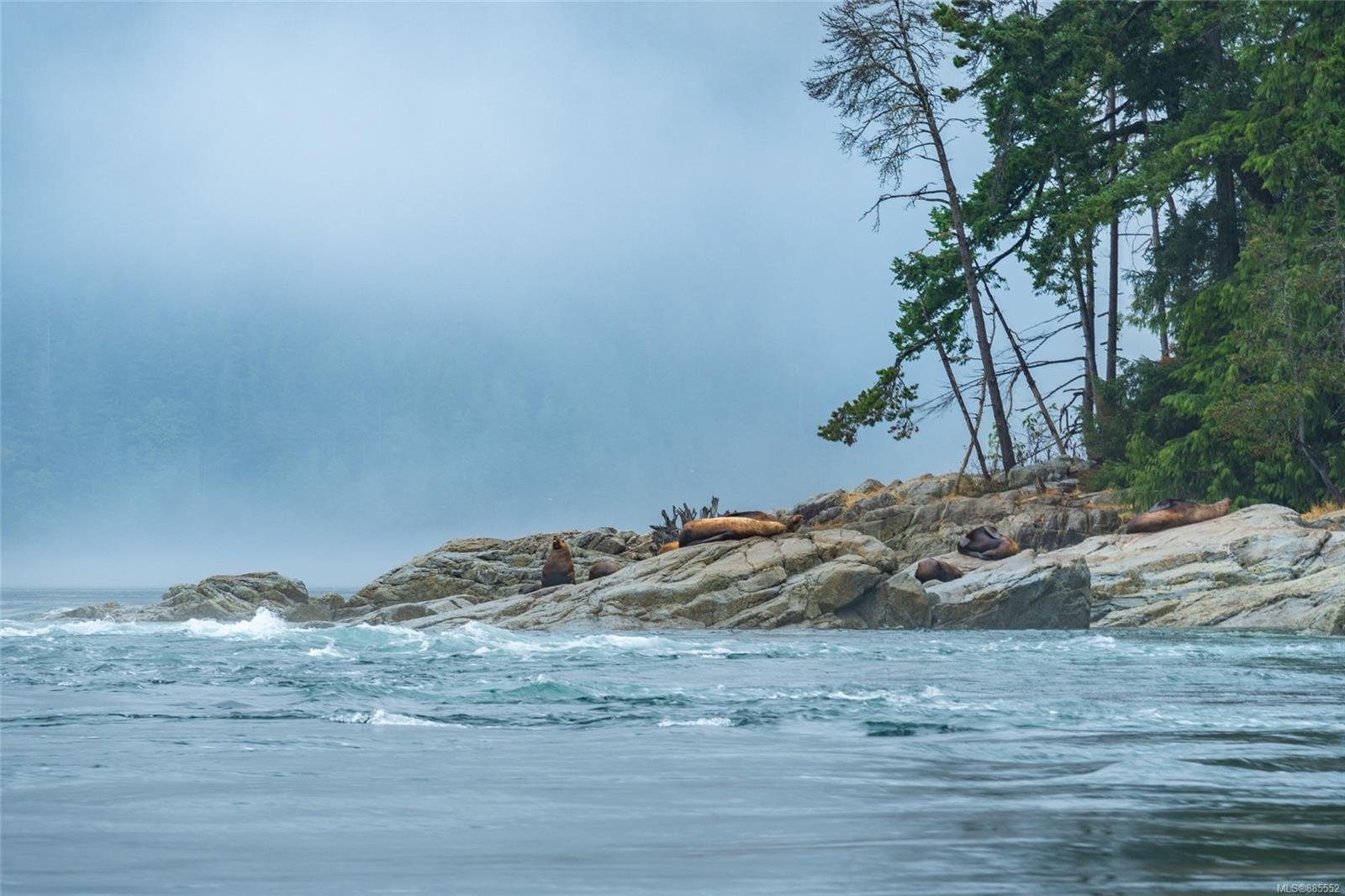 DL 2515 Bute Inlet - Isl Small Islands (Campbell River Area) Land for sale(885552) #44