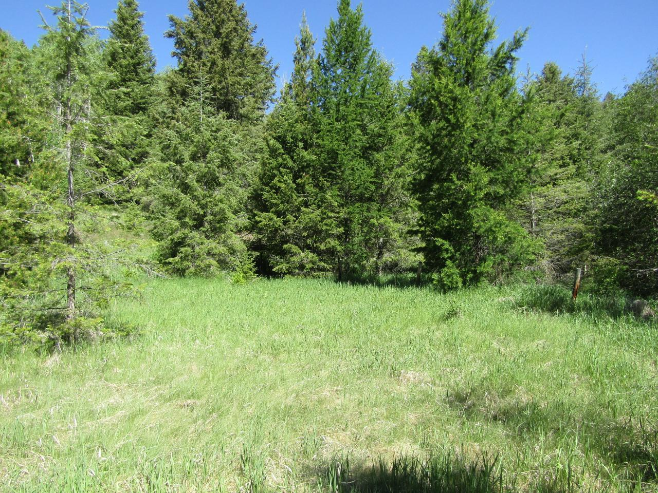 Lots 1-9 HIGHWAY 3 - Greenwood for sale(2461528) #6