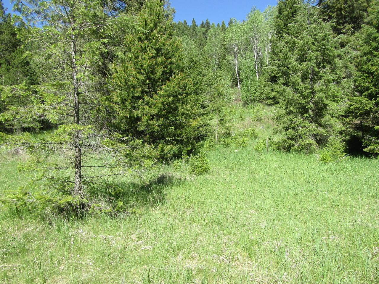 Lots 1-9 HIGHWAY 3 - Greenwood for sale(2461528) #7
