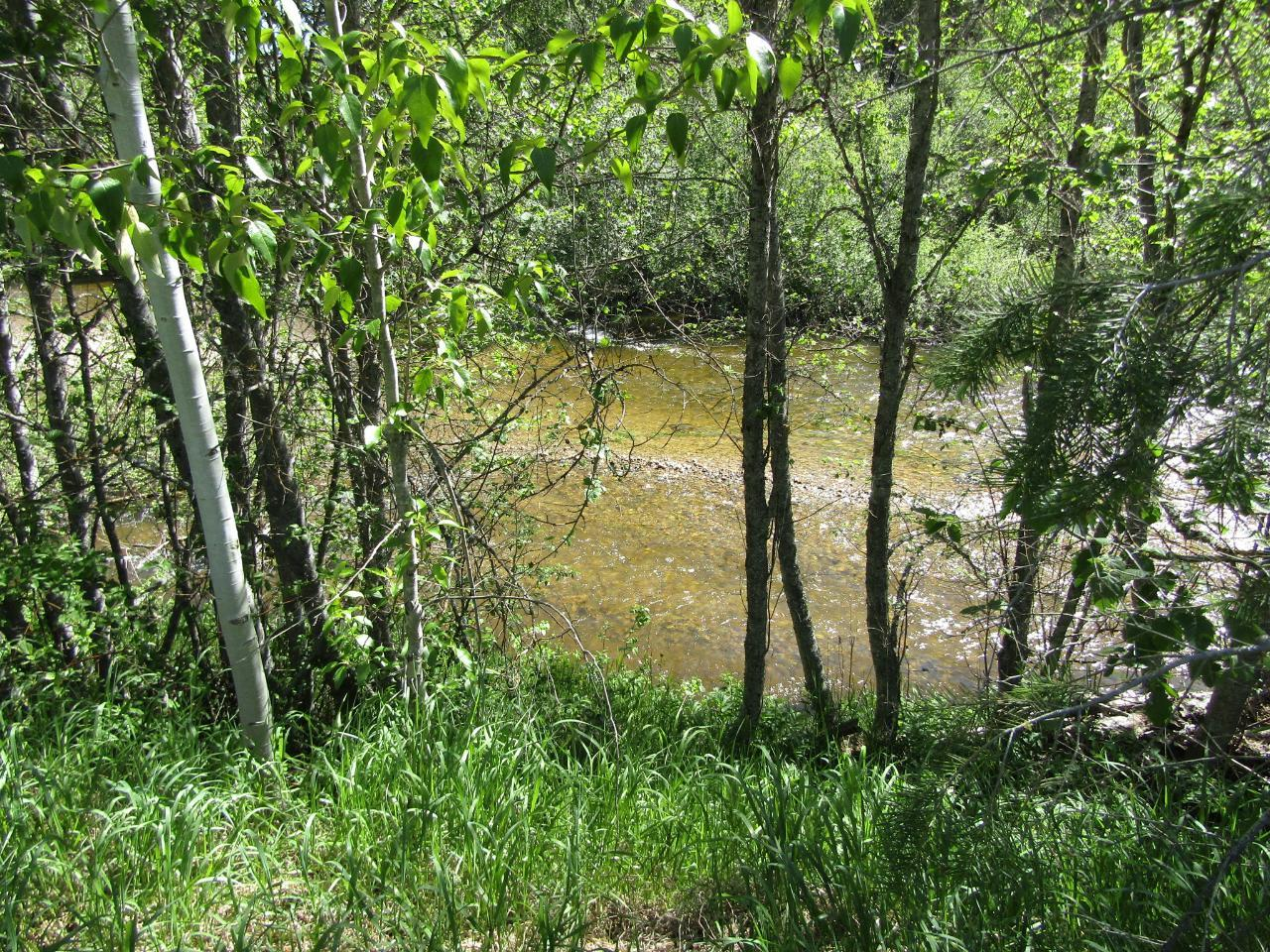 Lots 1-9 HIGHWAY 3 - Greenwood for sale(2461528) #9