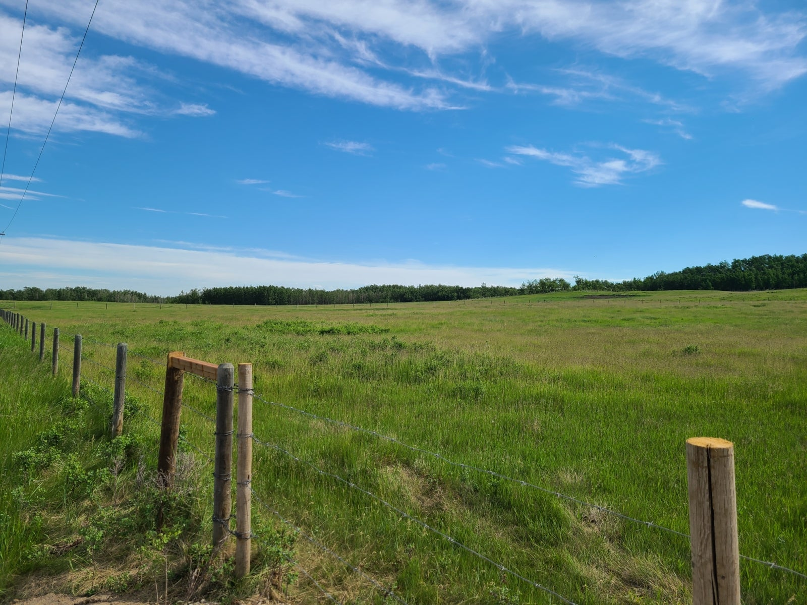 Range Road 282, Rural Red Deer County, AB  T4C 1R4 - Other Land for sale(A1120817) #1