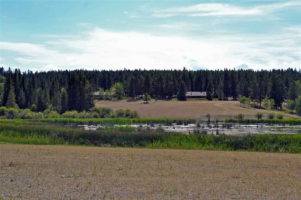 Lot 2 Dog Creek Road - Williams Lake Multi-family for sale, 2 Bedrooms (R2159850) #1