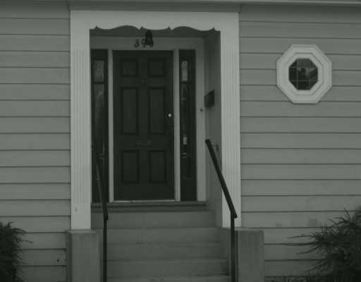 390 W 16TH AV - Cambie House/Single Family for sale, 3 Bedrooms (V583970) #3