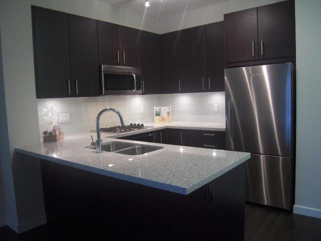 # 301 119 W 22ND ST - Central Lonsdale Apartment/Condo for sale, 1 Bedroom (V936339) #1