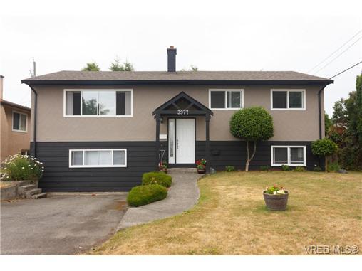 3977 Cedarwood St - SE Lambrick Park Single Family Detached for sale, 5 Bedrooms (353211) #1