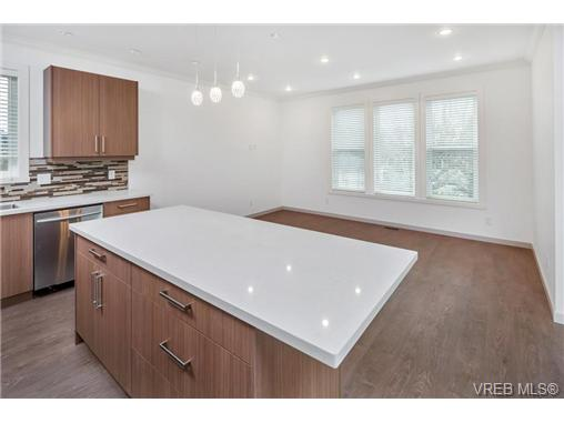 1828 Adanac St - SE Camosun Single Family Detached for sale, 5 Bedrooms (358199) #4