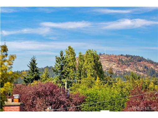 1764 Midgard Ave - SE Mt Tolmie Single Family Detached for sale, 4 Bedrooms (369576) #7