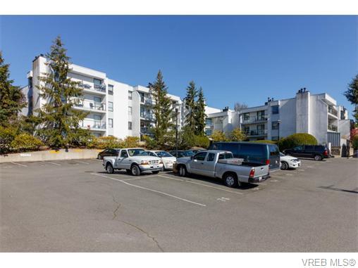 204 290 Regina Ave - SW Tillicum Condo Apartment for sale, 2 Bedrooms (370639) #1