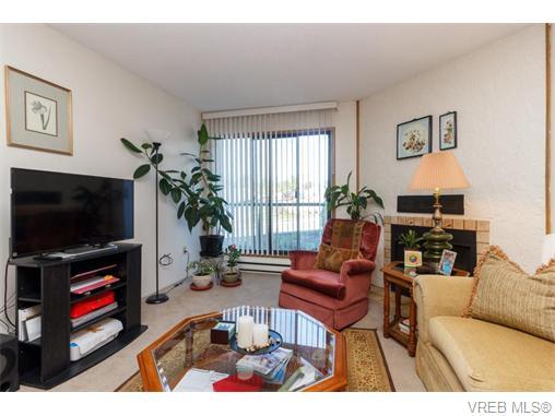 204 290 Regina Ave - SW Tillicum Condo Apartment for sale, 2 Bedrooms (370639) #7