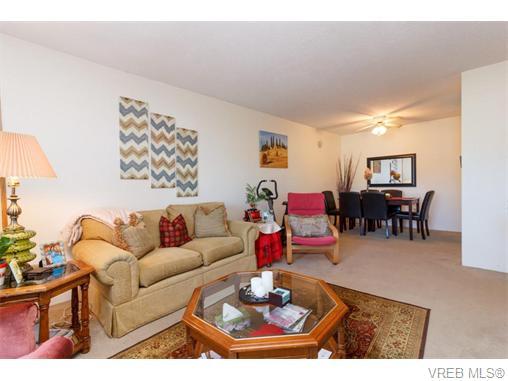 204 290 Regina Ave - SW Tillicum Condo Apartment for sale, 2 Bedrooms (370639) #8