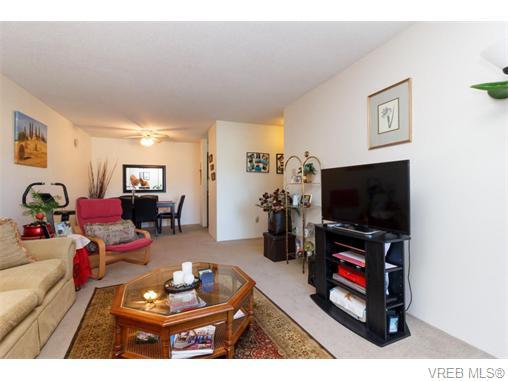 204 290 Regina Ave - SW Tillicum Condo Apartment for sale, 2 Bedrooms (370639) #9