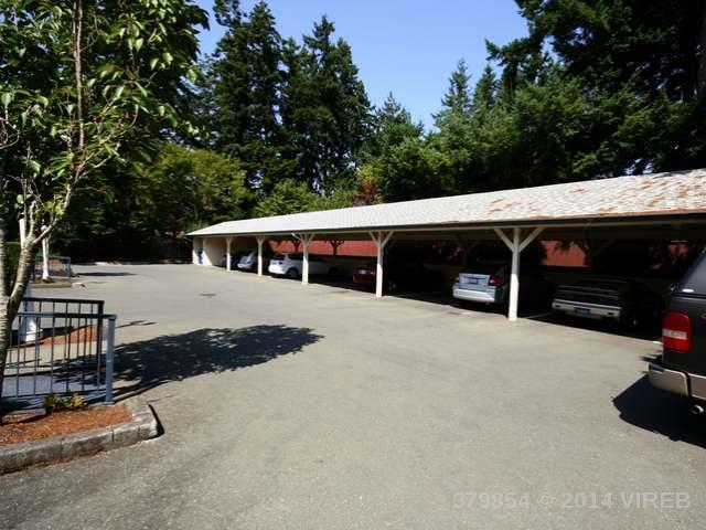103 1902 COMOX AVE - CV Comox (Town of) Condo Apartment for sale, 2 Bedrooms (379854) #3
