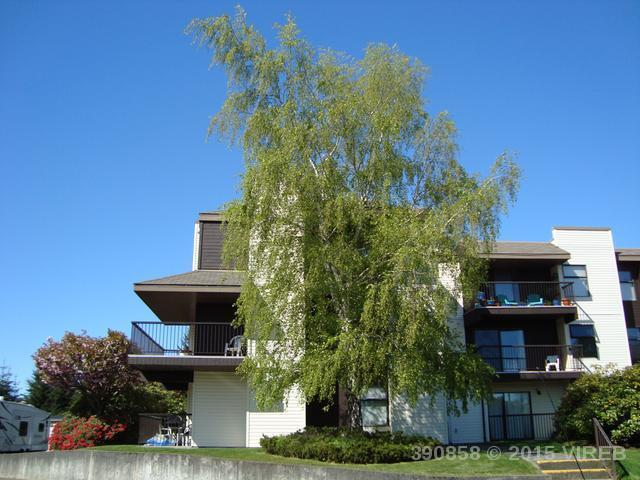 313 585 DOGWOOD S STREET - CR Campbell River Central Condo Apartment for sale, 1 Bedroom (390858) #3