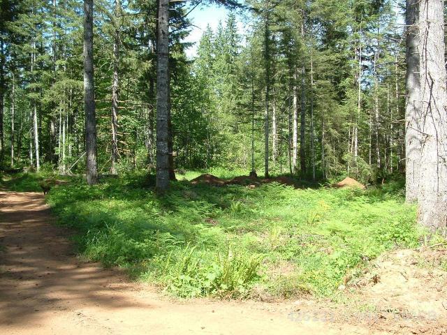 LT 21 9560 SARMMA DR - CV Merville Black Creek Land for sale(425131) #4