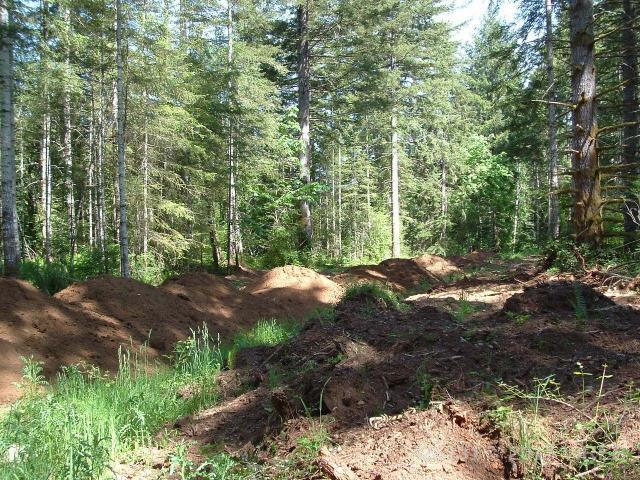 LT 21 9560 SARMMA DR - CV Merville Black Creek Land for sale(425131) #6