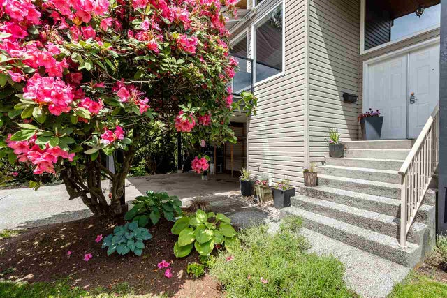 20917 50 AVENUE - Langley City House/Single Family for sale, 4 Bedrooms (R2461857) #2