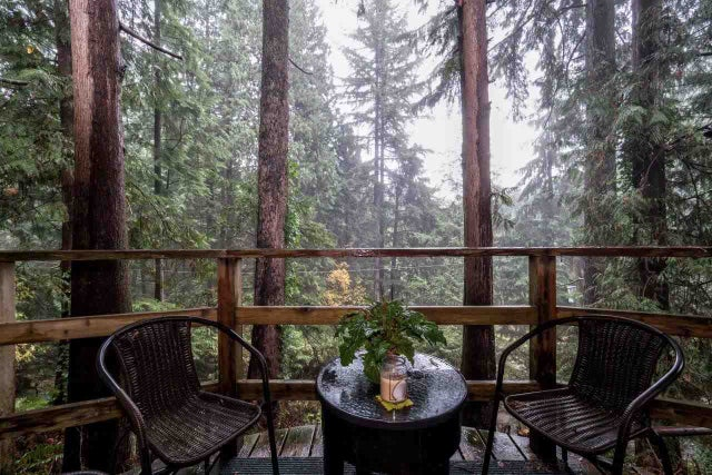 4520 JEROME PLACE - Lynn Valley House/Single Family for sale, 5 Bedrooms (R2012287) #16