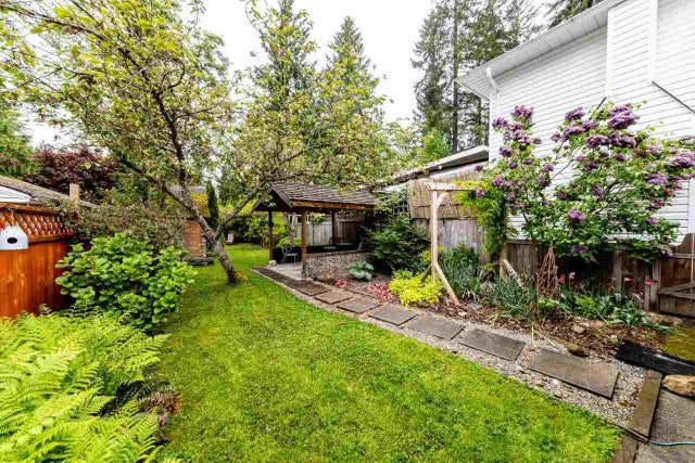 3669 MCEWEN AVENUE - Lynn Valley House/Single Family for sale, 3 Bedrooms (R2456522) #21