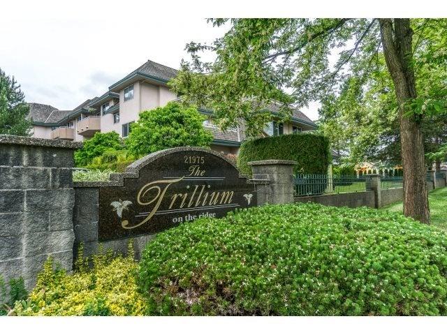 102 21975 49 AVENUE - Murrayville Apartment/Condo for sale, 2 Bedrooms (R2069616) #3