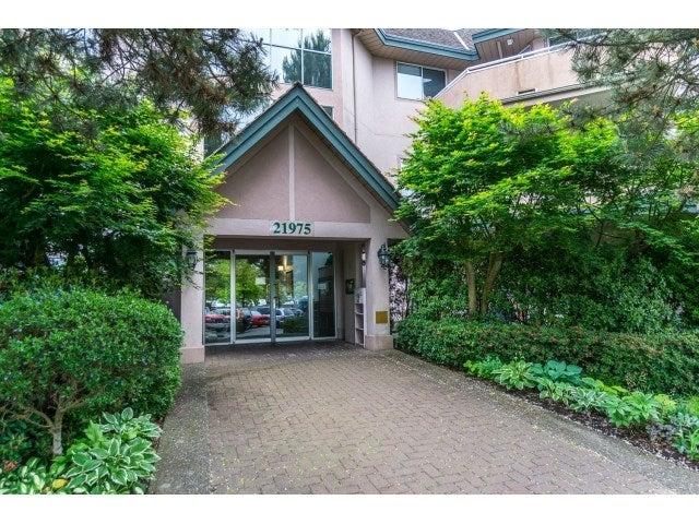102 21975 49 AVENUE - Murrayville Apartment/Condo for sale, 2 Bedrooms (R2069616) #4