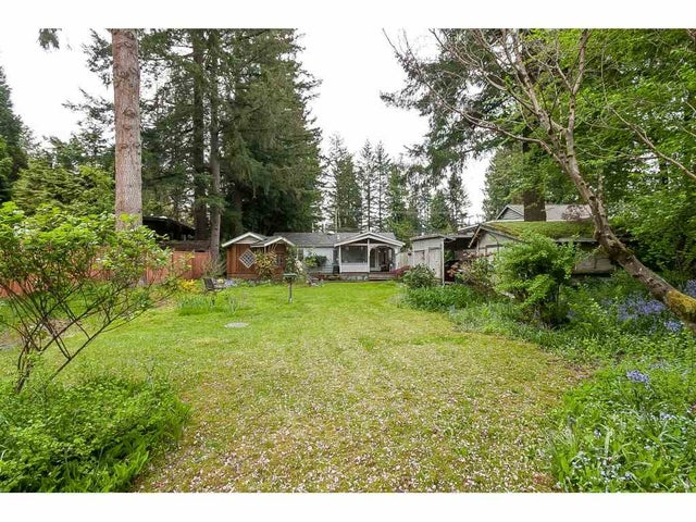 4513 200 STREET - Langley City House/Single Family for sale, 2 Bedrooms (R2364251) #2