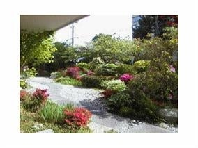 507 1425 ESQUIMALT AVENUE - Ambleside Apartment/Condo for sale, 1 Bedroom (R2099115) #4