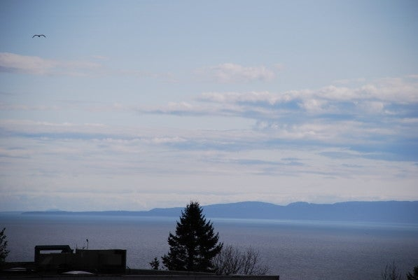 602 1521 GEORGE STREET - White Rock Apartment/Condo for sale, 1 Bedroom (R2244552) #19
