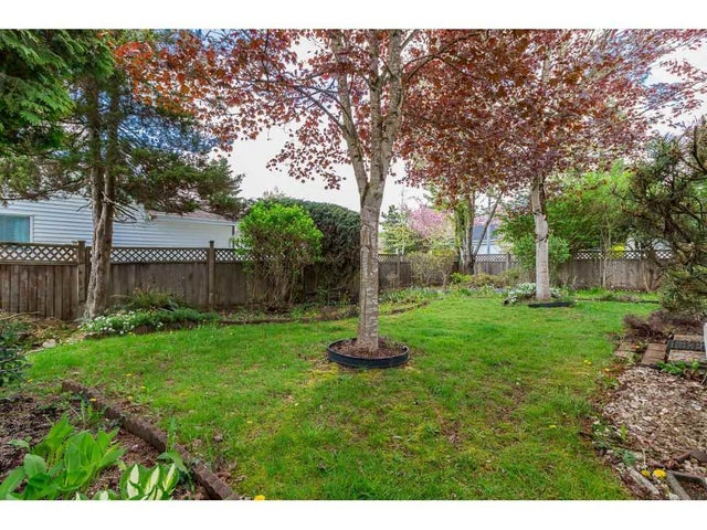 8491 155A STREET - Fleetwood Tynehead House/Single Family for sale, 2 Bedrooms (R2262497) #19