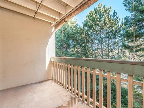 308 3277 Quadra St - SE Maplewood Condo Apartment for sale(372603) #11
