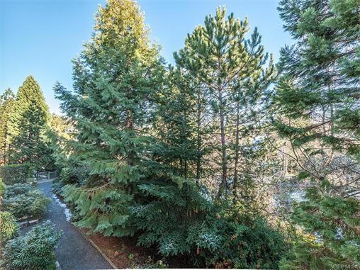 308 3277 Quadra St - SE Maplewood Condo Apartment for sale(372603) #12