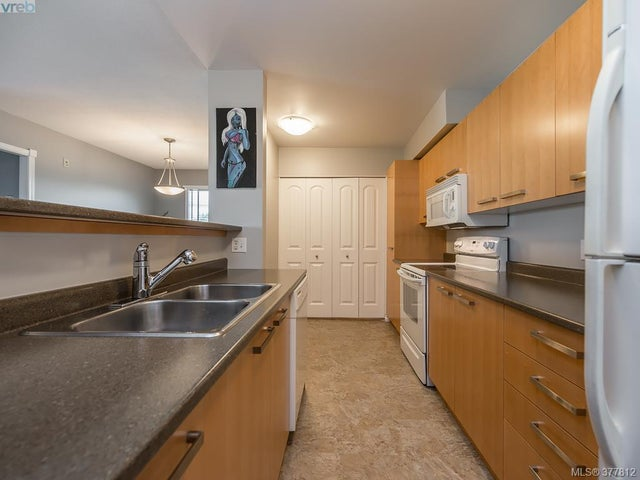 303 3206 Alder St - SE Quadra Condo Apartment for sale, 2 Bedrooms (377812) #6