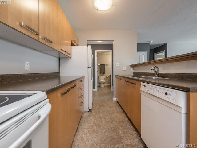 303 3206 Alder St - SE Quadra Condo Apartment for sale, 2 Bedrooms (377812) #7
